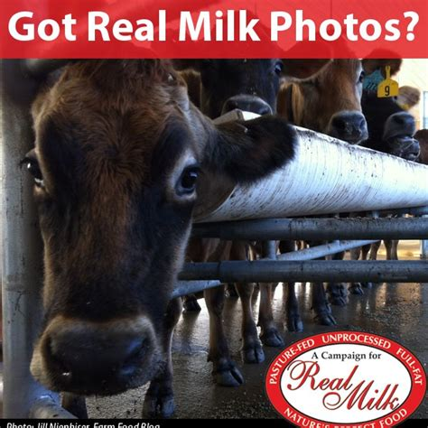 Photos - A Campaign for Real MilkA Campaign for Real Milk