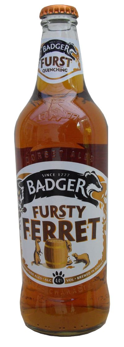 CSMS GEOLOGY POST: BADGERS, STONEHENGE, AND A FURSTY FERRET