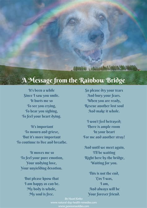 Pet Loss Poems - Celebrating the Love and Lives of Our Dogs
